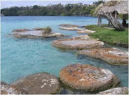 Stomatolite